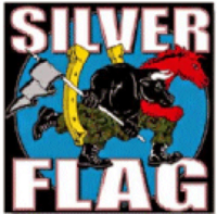 Silver Flag exercise graphic